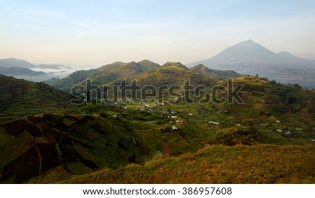 Terraced fields with Virunga Volcanoes and Mgahinga Gorilla National Park in background from Kisoro in colorful early morning, with mist in the valley. Kisoro District, Uganda, Africa.