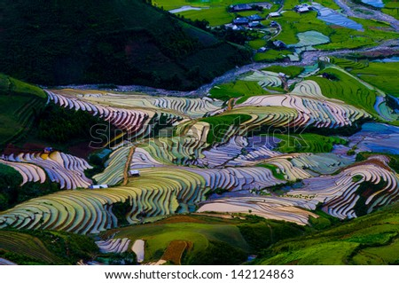 Terraced rice field in water season in Mu Cang Chai, Yen Bai province, Vietnam