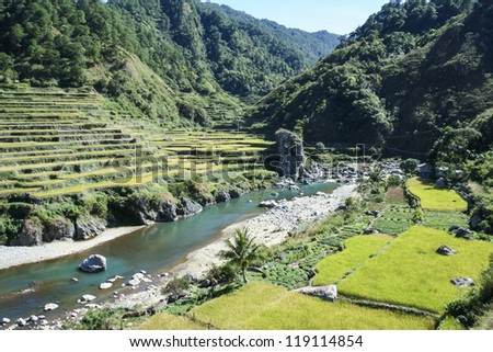 terraced rice fields of bontoc in northern luzon in the philippines - stock photo