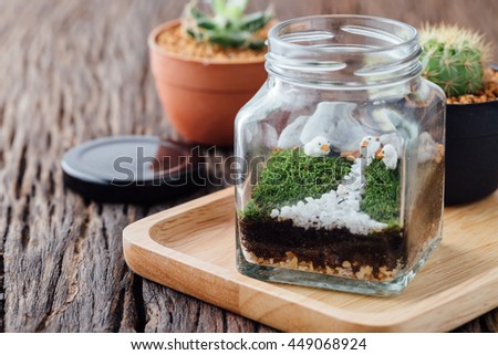 Terrariums with cactus on wooden table