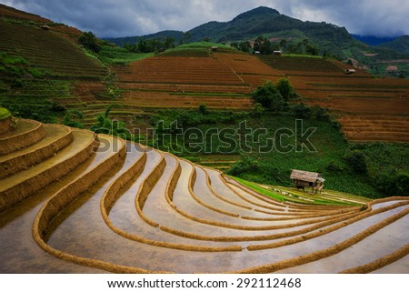 terrced rice fields - Before raining terraced rice fields in Mu Cang Chai, Vietnam