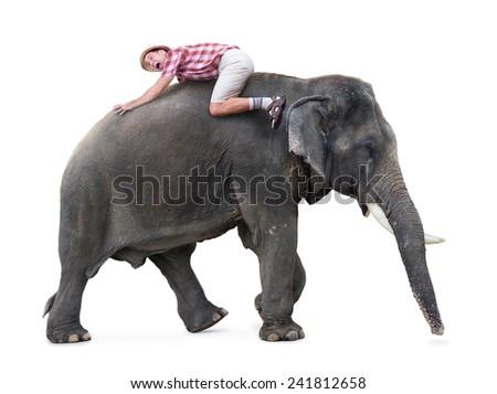 terrified tourist lying on a walking elephant - stock photo