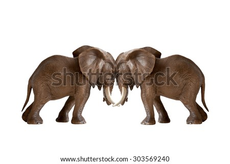 test of strength concept elephants pushing against each other isolated on white background