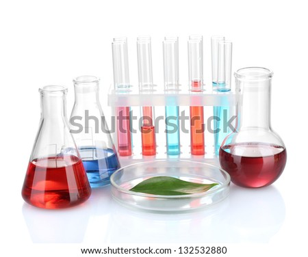 Test-tubes and green leaf tested in petri dish, isolated on white - stock photo