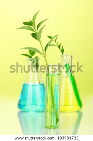 test-tubes with a colorful solution and plant on yellow background close-up