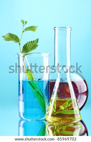 test tubes with plants on blue background - stock photo