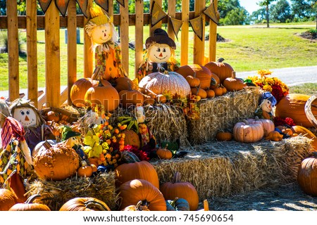 Texas fall autumn rustic hill country Halloween landscape scene with pumpkins and scarecrow entire fall scene ready for hallow eve