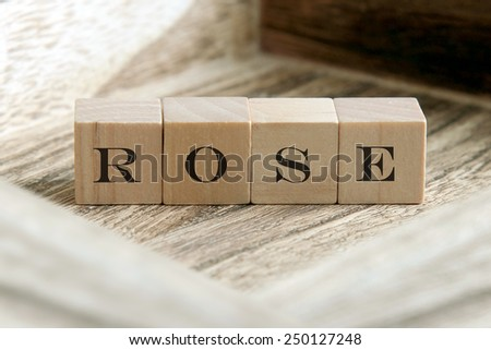 text of ROSE on wooden cubes
