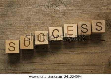 text success on a wooden blocks on a wooden background - stock photo