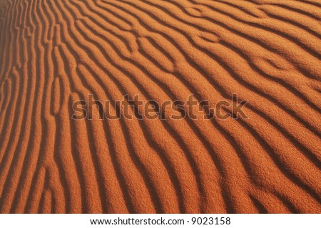 Texture about sand
