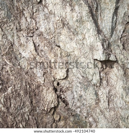 Texture and Seamless background of granite stone