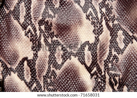 Texture background brown snake leather - stock photo