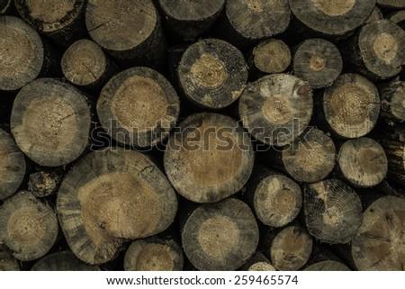 Texture, Background. Cut firewood - stock photo