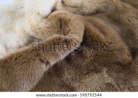 Mink Coat Stock Images Royalty-Free Images & Vectors | Shutterstock