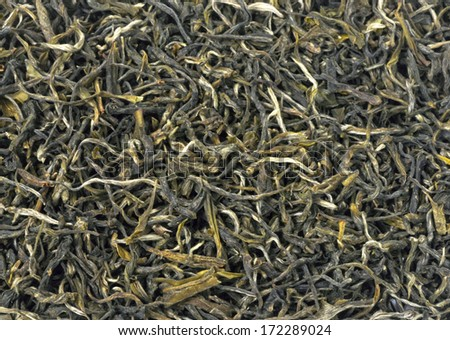 Texture background of loose green tea. Type is spring bud green tea - stock photo