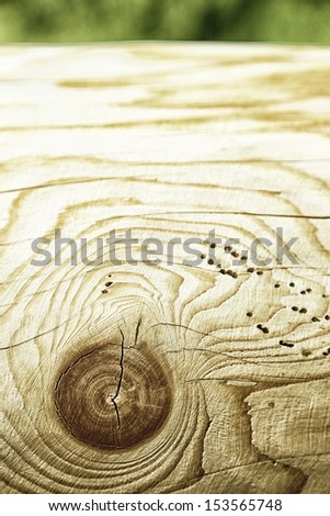 Knot Hole Stock Images Royalty Free Images Amp Vectors