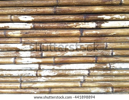 Texture bamboo background.