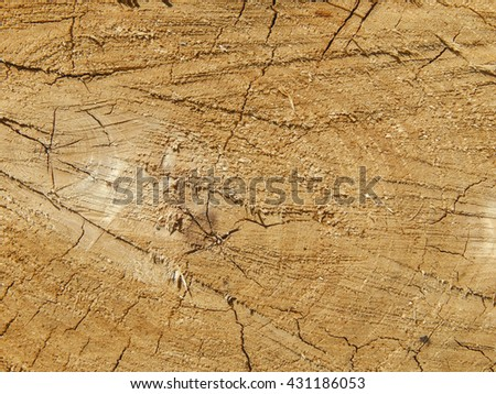 Texture closeup of sawn wood