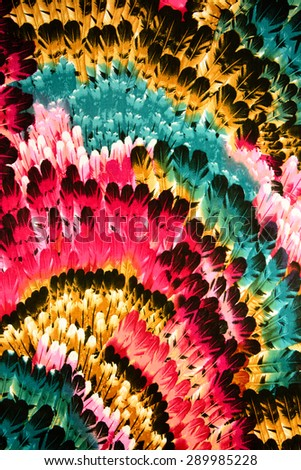 Texture Fabric pattern of the feathers - stock photo