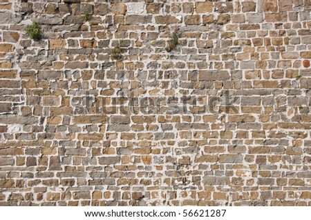 Texture of a big wall of the medieval castle