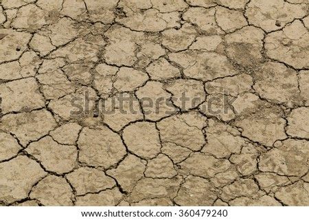 Texture of a dry and  cracked land - stock photo