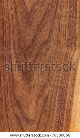 Texture of american walnut (high-detailed wood texture series) - stock photo