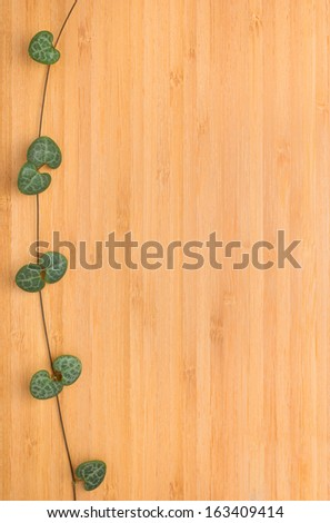 texture of bamboo with a beautiful branch , wooden background - stock photo