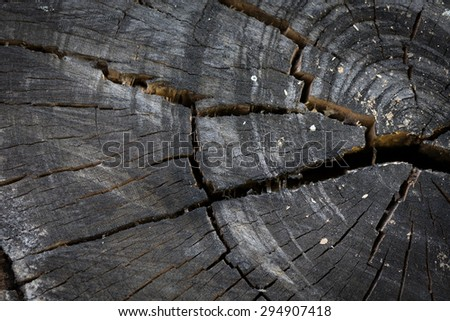 texture of black wood logs background with crack damage of aged annual rings