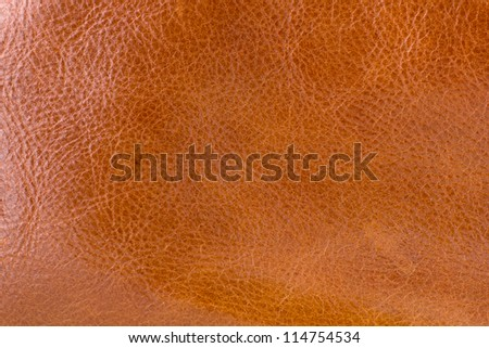 Texture of Brown Leather for Web page Background - stock photo