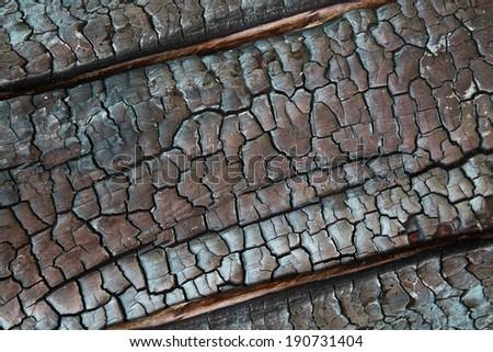 Texture of burnt wood - stock photo