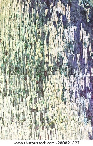 Texture of cracked rough wood surface painted