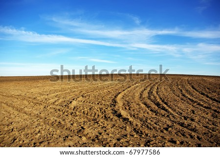 Texture of cultivated field and blue sky. - stock photo