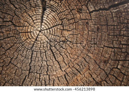 texture of dark wood. natural background. empty template - stock photo