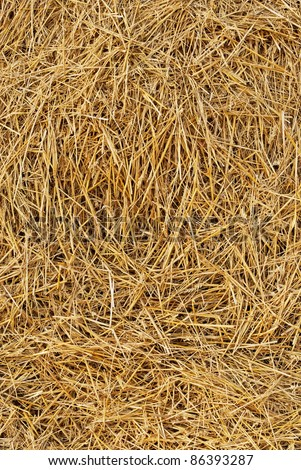 Hay Texture Stock Images Royalty Free Images Amp Vectors