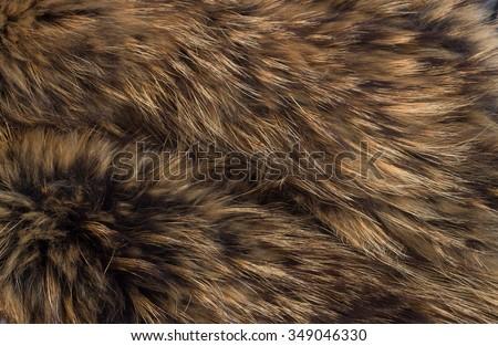 texture of fur - fox - high resolution - stock photo
