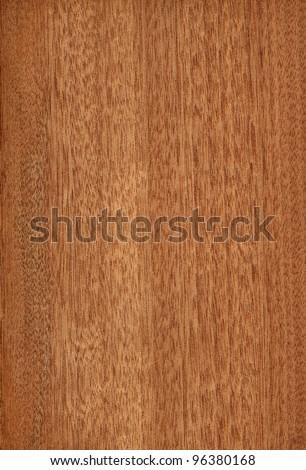 Texture of gabon (high-detailed wood texture series) - stock photo
