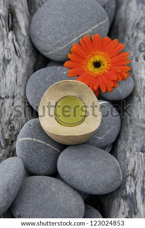 Texture Of nature driftwood wood with gerbera flower ,stones, candle