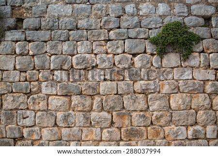 Texture of old cobblestone. City street. - stock photo