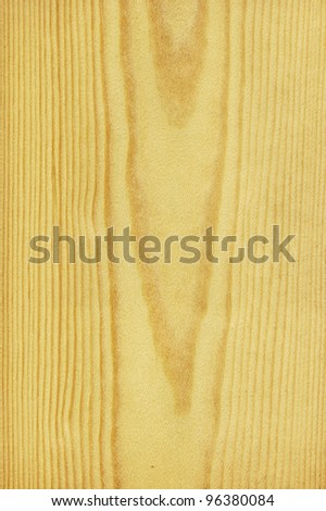 Texture of pine (high-detailed wood texture series) - stock photo
