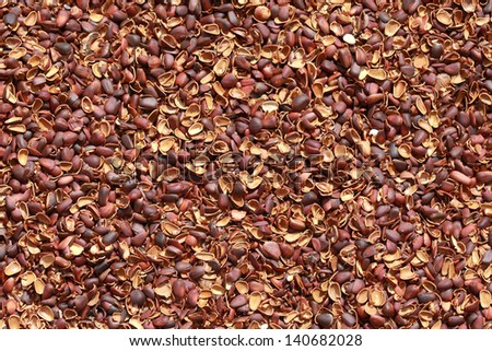 Texture of pine nut shell, used as a soil fertilizer, background