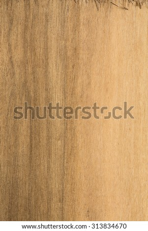 Texture of plywood pattern background