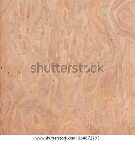 texture of root, wood texture