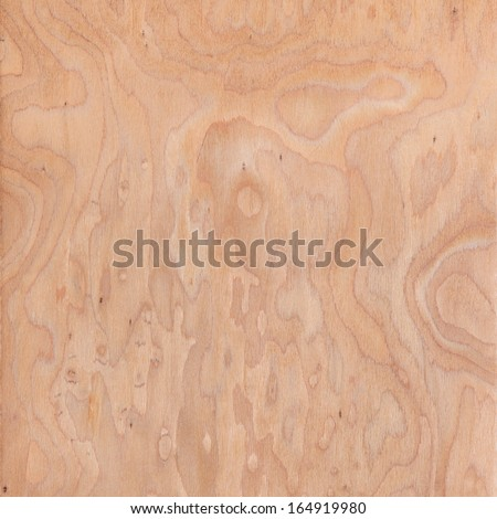 texture of root, wood texture beautiful - stock photo
