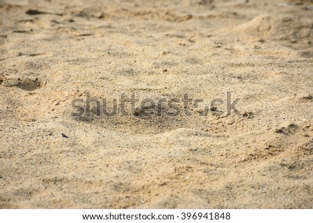 Texture of sand on the beach./Close up - stock photo