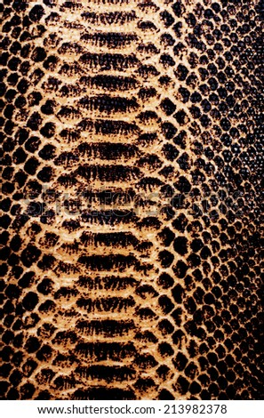 texture of snake skin