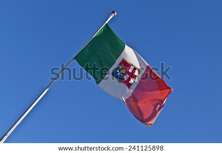 Texture of the Italian flag - stock photo