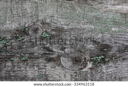 Texture of the old wooden plank for a background