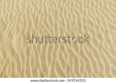 Texture of the sand dunes. Sunny day. - stock photo
