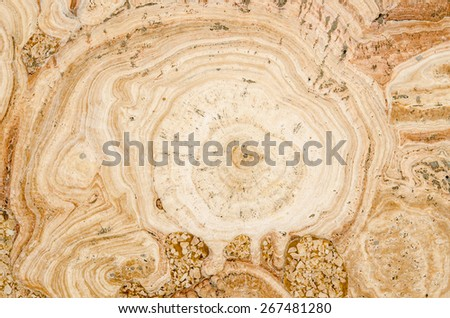 texture of the wall for background made from texture yellow stone. - stock photo