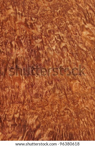 Texture of vavona (high-detailed wood texture series)